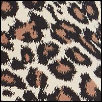 Paint Brush Cheetah