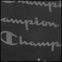 Champion Script/Black