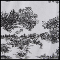 White/Black Toile