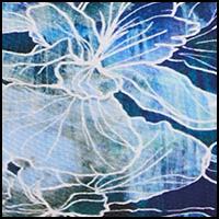 Ink Floating Iris
