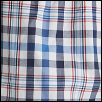 Plaid Federal Blue
