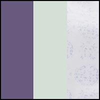 Waters/Medallion/Iris