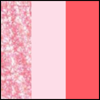 Pink/Daisy/Tulipa