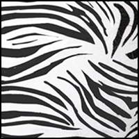Classic Zebra