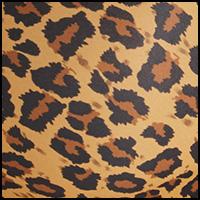 Core Leopard