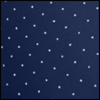 Gloss Navy Pin Dot