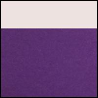 Violet Splendor