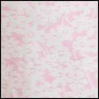White Daisy Pink