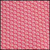 Raspberry Twin Print