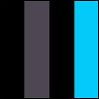 Ebony/Blue Jewel/Black