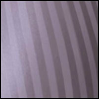 Whisper Violet Stripe