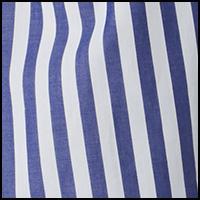 Blue Bengal Stripe
