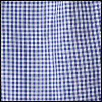 Blue Mini Gingham