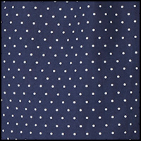 Cruise Navy/Dots