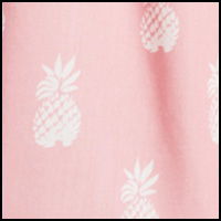 Florida Pink Pineapple