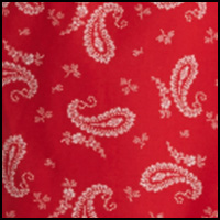 Red/Nevis Paisley