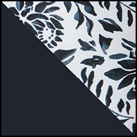 Waterlily/Black Night