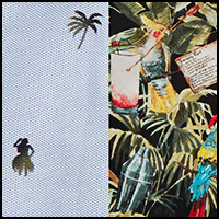 Palm Hula/Parrot Party
