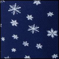 Blizzard Snowflake