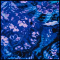 Purple Pattern 2