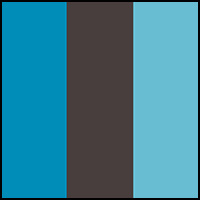 Deceit/Charcoal/Blue
